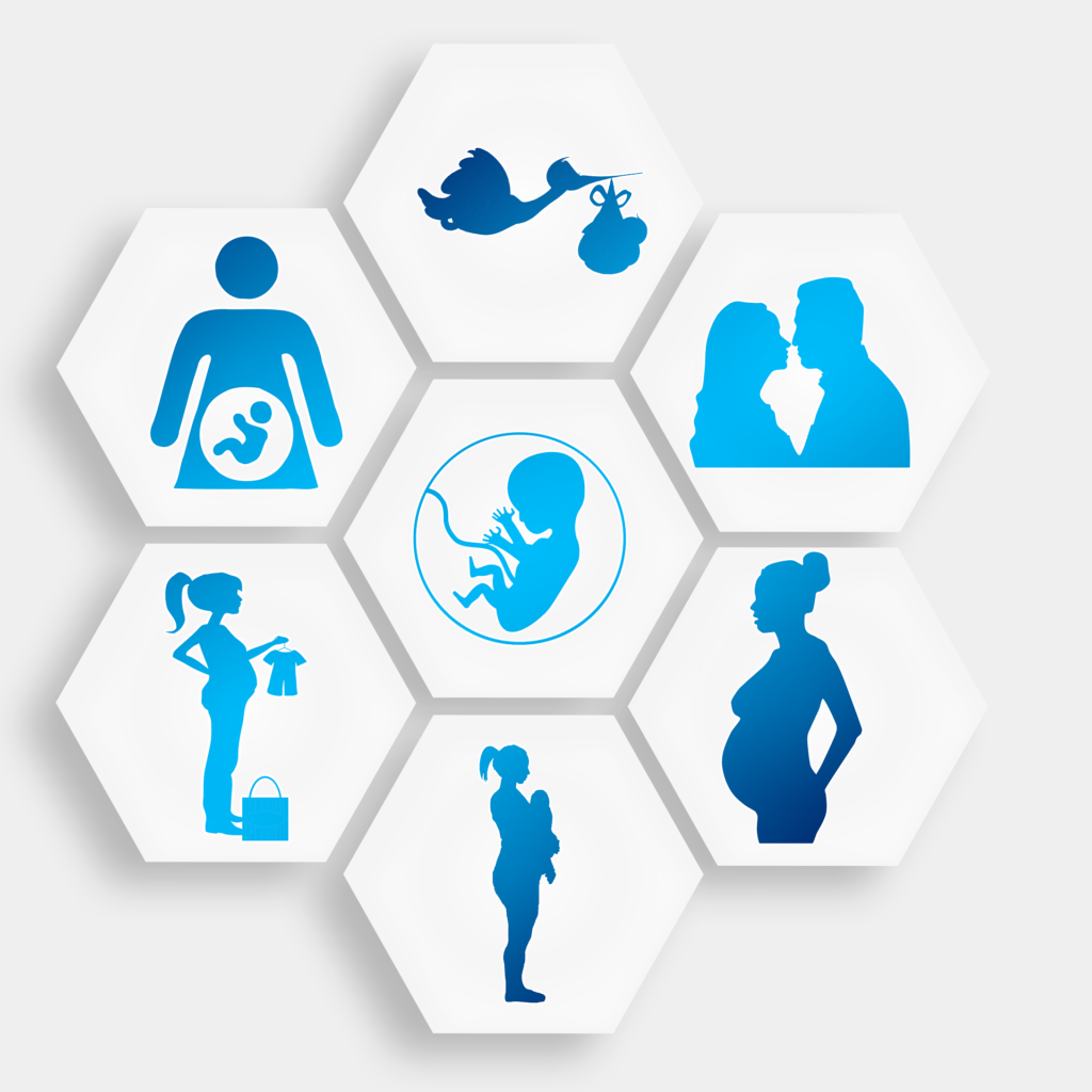 pregnancy-1749858_1920
